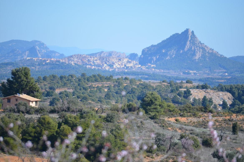 Horta de Sant Joan 2